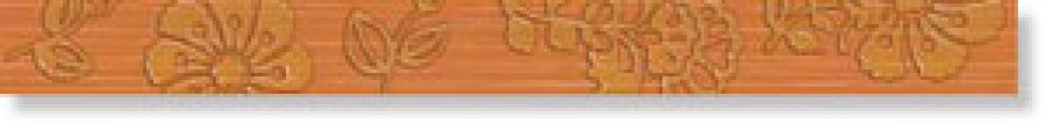 Бордюр Irvine Orange 4x45
