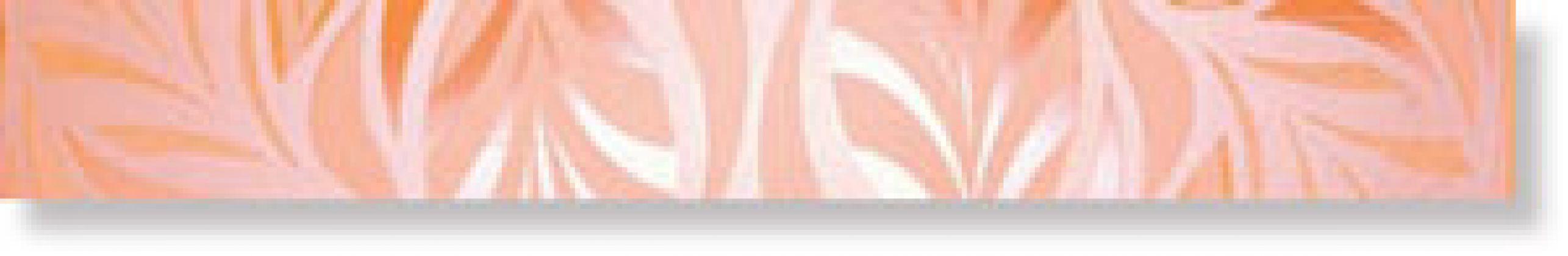 Бордюр Gloss Orange 6x50