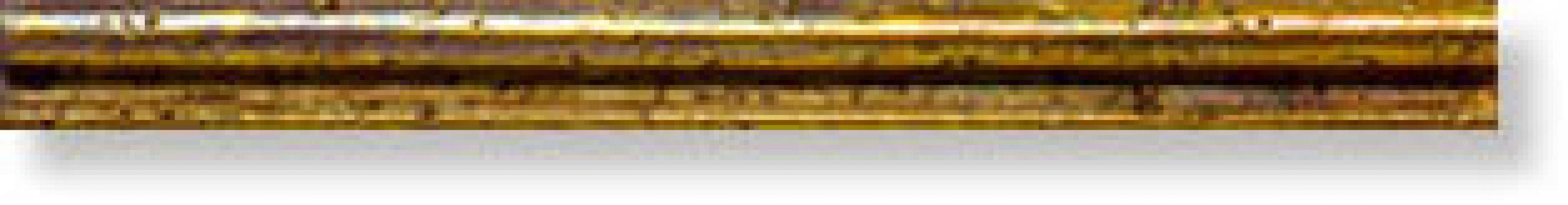 Бордюр Mold. Fresco Oro 2x23