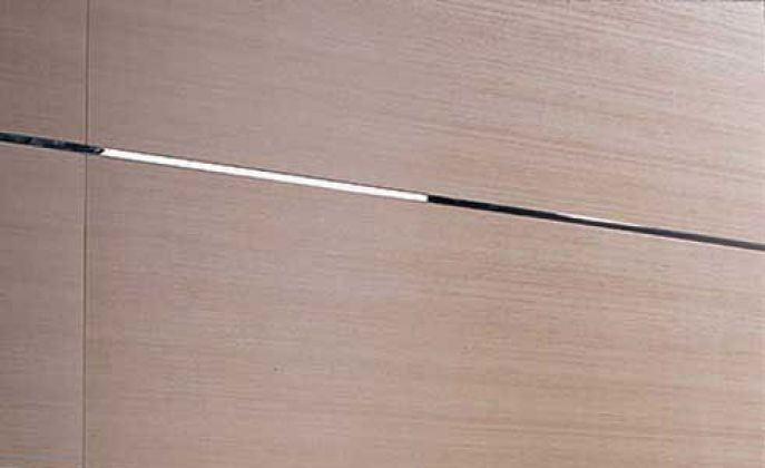 Bambu (Venis)
