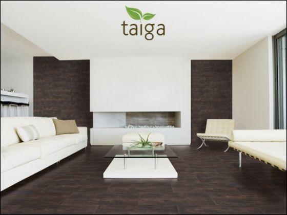 Taiga (Exagres)