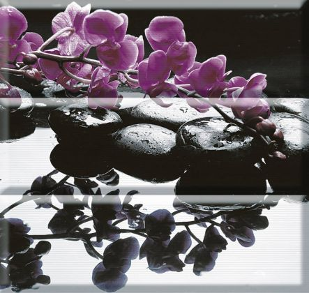 Copmposicion Wellness Purple 45x45