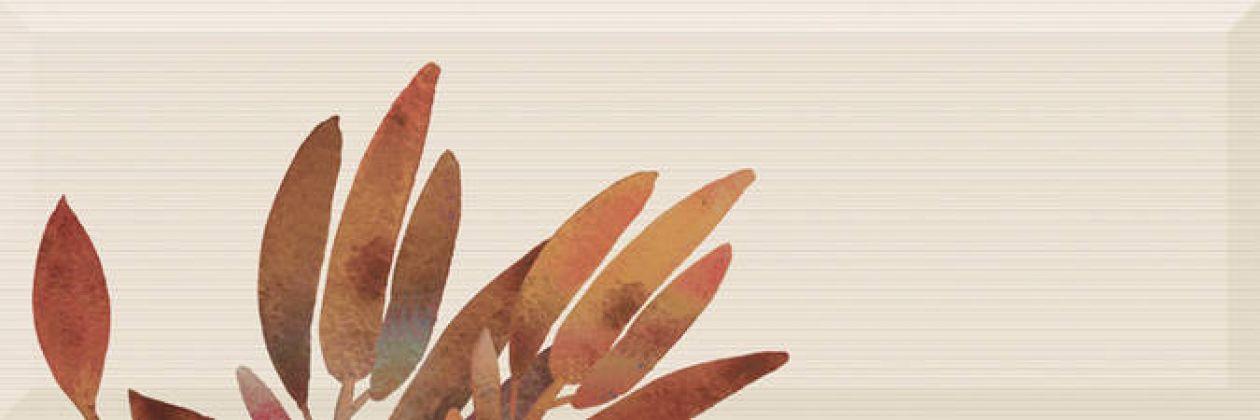 Decor Savage Flowers Marron 02 15x45