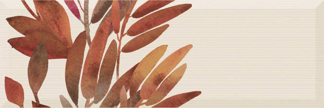 Decor Savage Flowers Marron 01 15x45