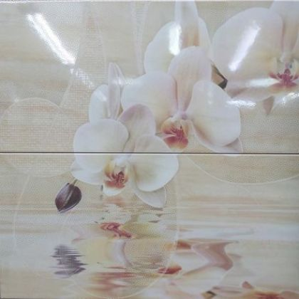 Decor Orchid Set.2 50x50