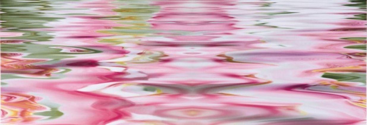 Cenefa Flower 10 Orchiee Brillo 25x73