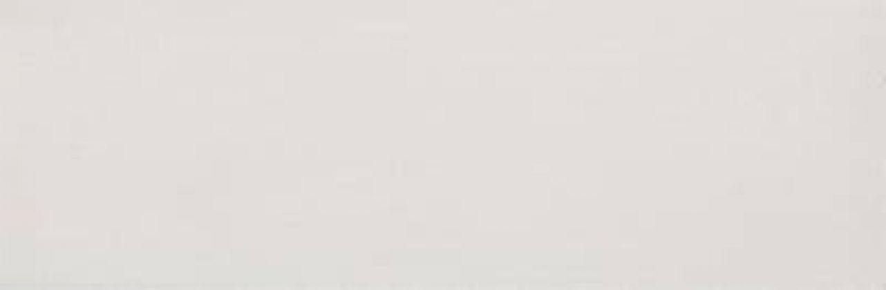 Ideal Blanco 29x90