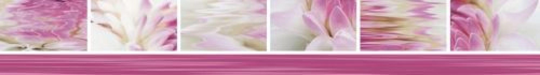 Виолетта 7x50
