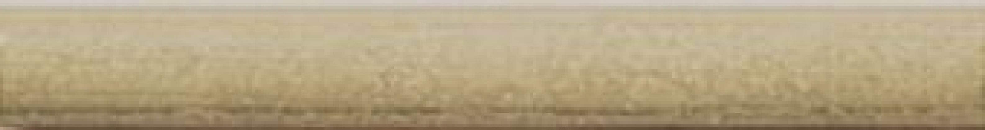 TORELO CHIC BEIGE 2x15