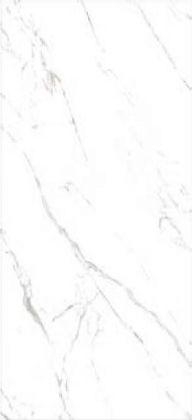 BOOKMATCH STATUARIO GRIGIO LUCIDO SPEC. ASP 118x258