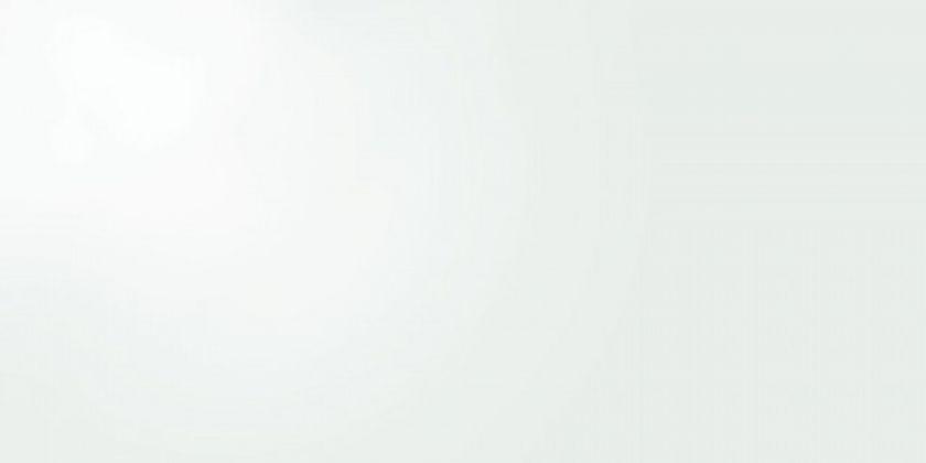 ZEUS WHITE GLOSS 49,1x98,2