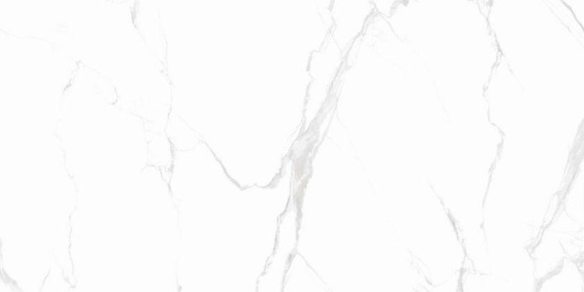 CARRARA Classic Grey Polished 60x120