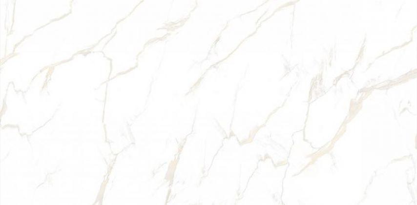 CALACATTA Gold Full Lappato 80x160