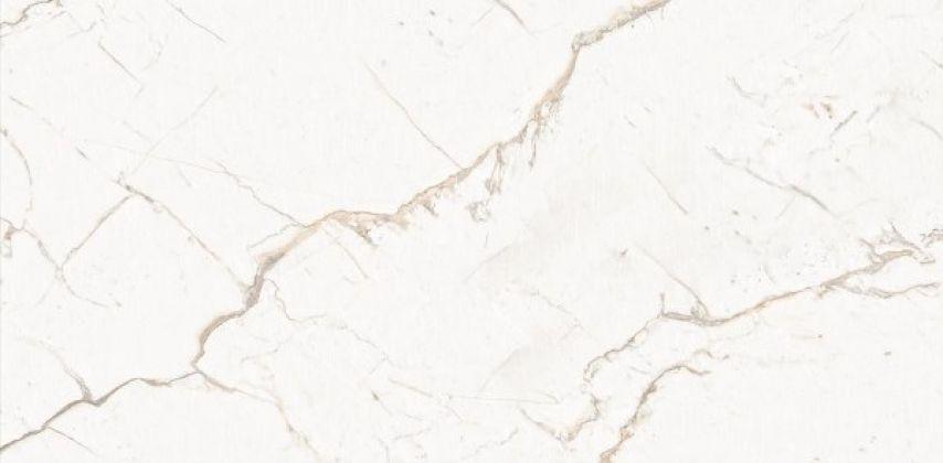 ARMONIA Gold Full Lappato 80x160