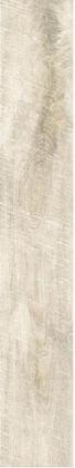 HARDWOOD IVORY RC 19,4x120