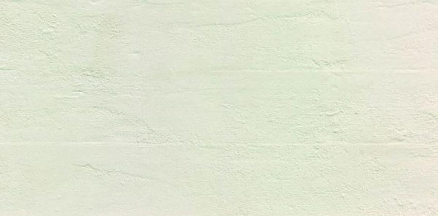 Evolve Linea White Broccato 30x60