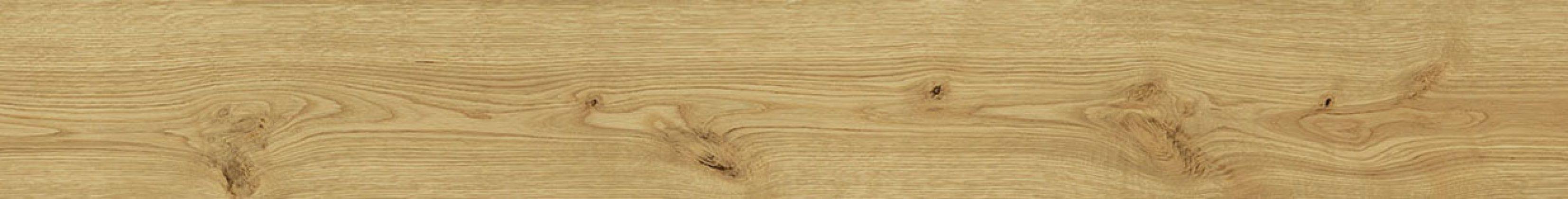 Exence Almond 18,5x150