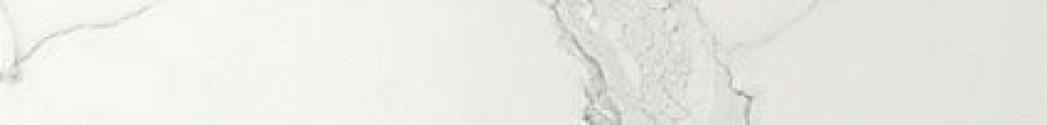 Marvel Calacatta Listell 7x60
