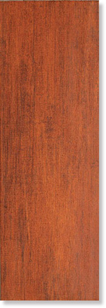 Плитка Forest Royal Spice 20x60