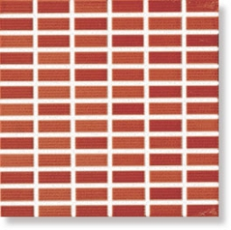 Glamour Coral Mosaic 25x25