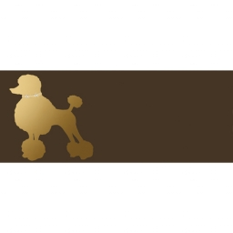 Bon Ton Fashion Dog Chocolat (Пудель)