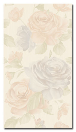 Queen Rose Bianco Neve 25x45 250C0F