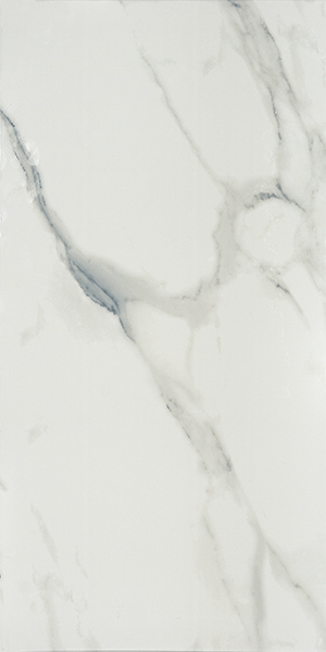 Плитка Ca Marmo Polished White 60x120