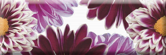 Decor Flowers 01 15x45