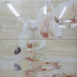Decor Orchid Set.2