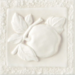 Apple Magnolia